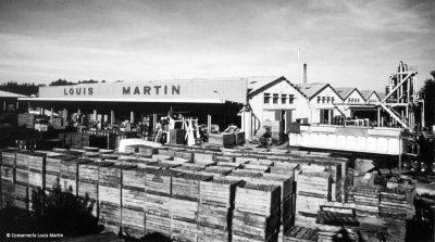 Ancine-Louis-Martin